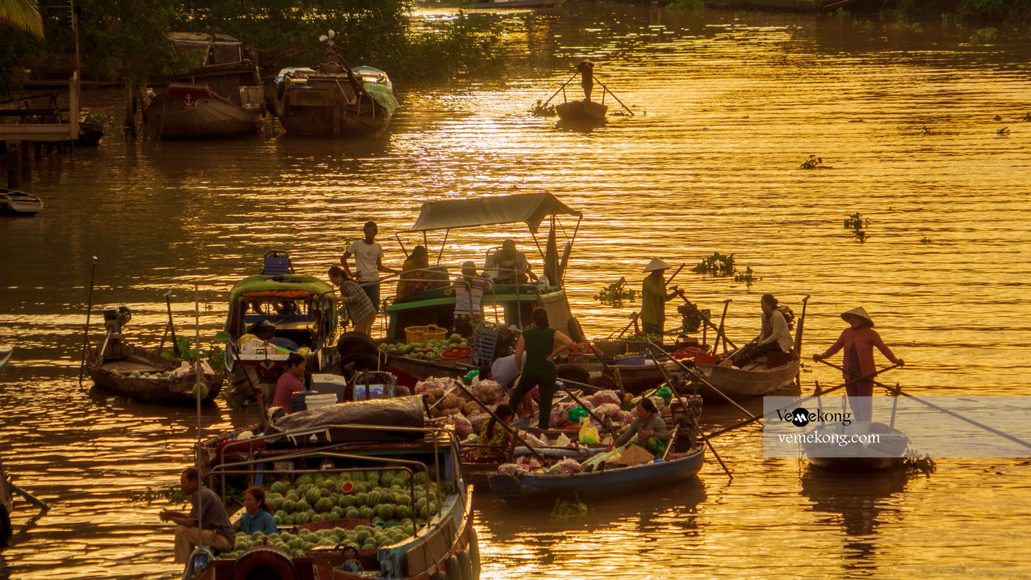 20 Best Things to Do & See in Can Tho, Vietnam