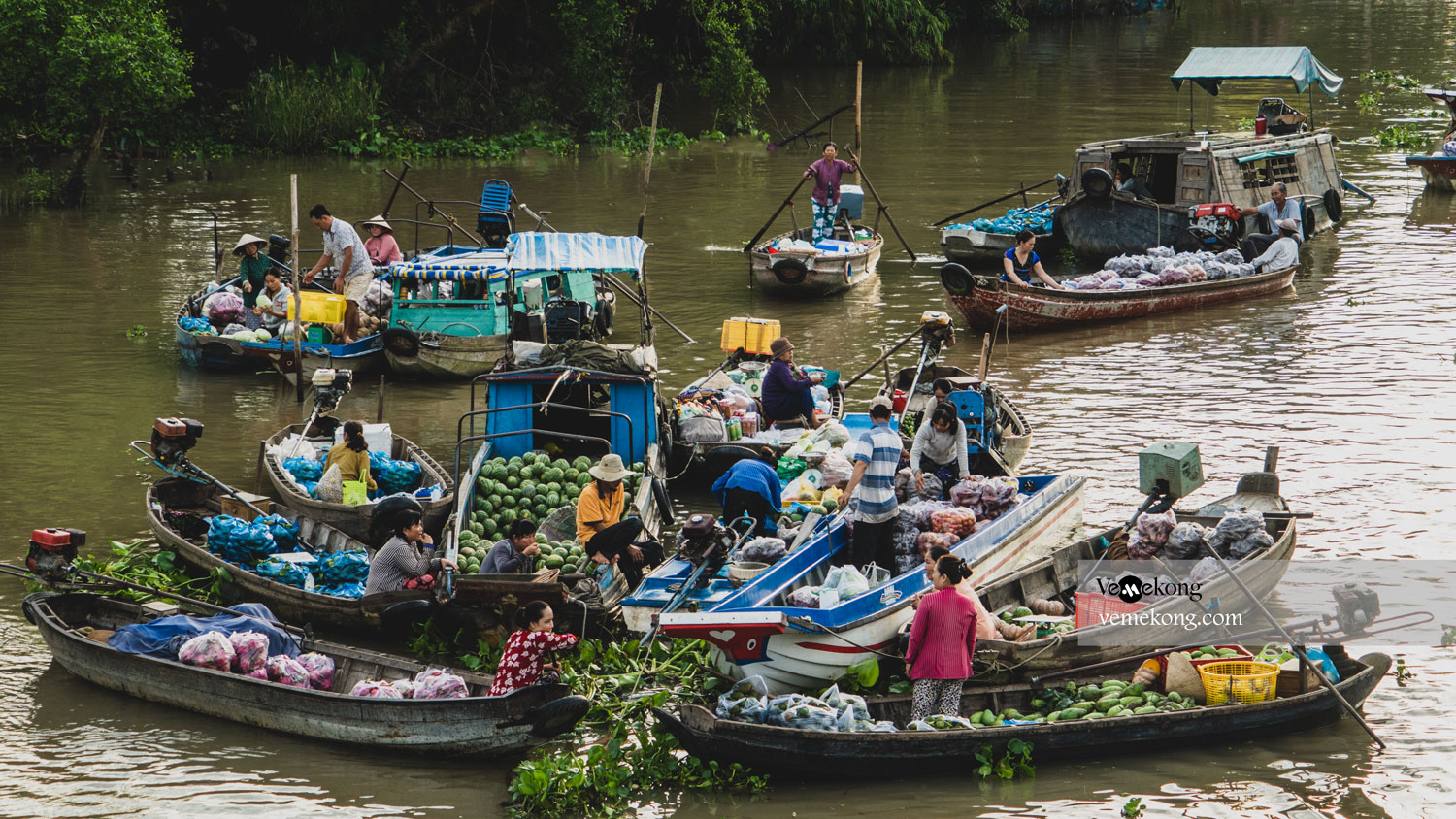 Ultimate Travel Guide to Phong Dien Floating Market & Small Canals